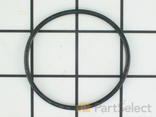 O-ring – Part Number: 218904301