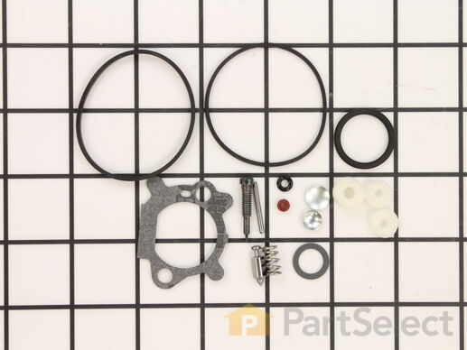 Carburetor Overhaul Kit – Part Number: 498260