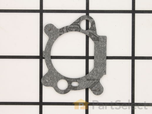 Air Cleaner Gasket – Part Number: 795629