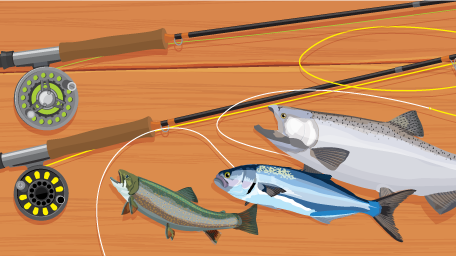 Choosing the Right Fly Fishing Outfit
